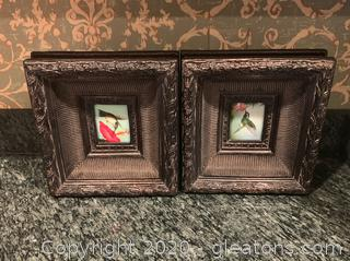 Humming Bird Framed Art