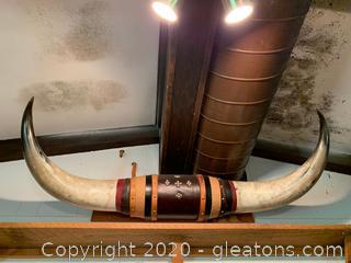 Life Size Steer Horns