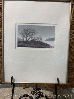 River View Print by Calvo