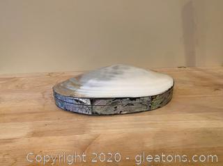 Oyster Shell Trinket Box