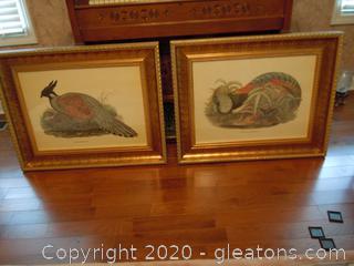 Pair of Waterfowl StillLives