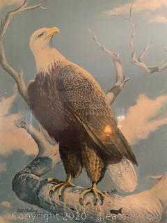 Bill Wesling Bald Eagle A/P
