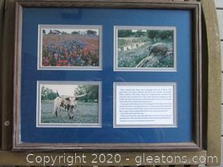 Framed Under Glass 3) 4 by 6 photos of Texas Landscape and the Legend of the A Drought and the Bluebonnet Flower
