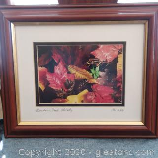 Limited Edition Photograph by Keri Scags- Bernheim Forest, Kentucky- Signed , Dated