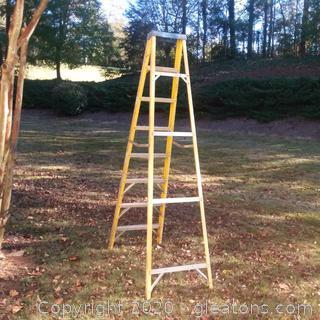 Werner 8' Step Ladder