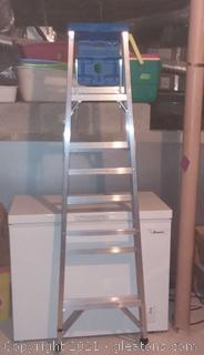 Werner 6' Aluminum Step Ladder - 250 lb. Load Capacity