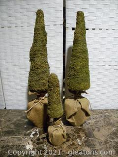Set of Burlap Wrapped Topiaries