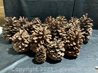 Large Pine Cones- Approx 40