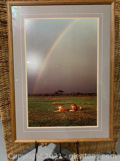 """Under the Rainbow"" Framed Photo by Thomas D.Mangelsen"
