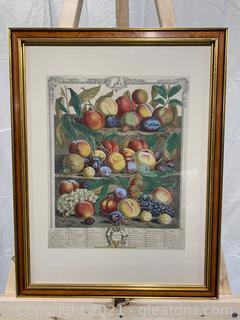 Robert Furber Print- Fruits of August 1732