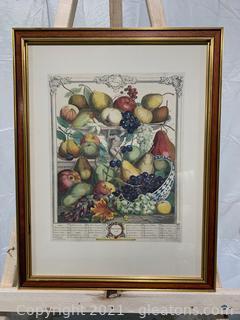 Robert Furber Print Fruits of November 1732