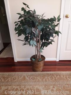 Lovely Artificial Ficus Tree in Basket