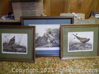 Nice Prints of Game Birds in Frame