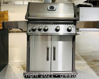 Stainless Napoleon Rouge XT Grill