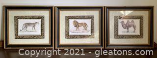 3 Stunning Framed Animal Prints