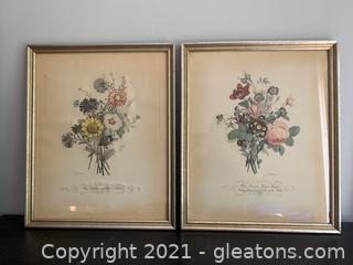 Jean Louis Prévost Prevost Engraving Plate Print Botanical Flowers Framed
