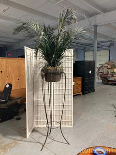 """Canary Island Date Palm in Clay Pot Made in Italy W/52""""H Metal Stand"""