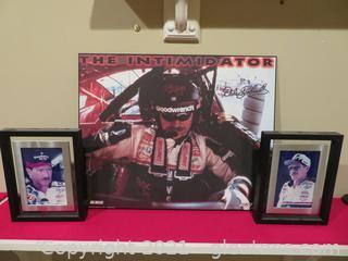 Fabulous Dale Earnhardt Collection