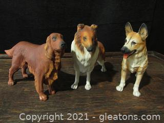 Collection of Domestic Dogs