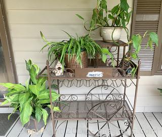 Bronze Wine Bottle Cart Plant Stand with Plants