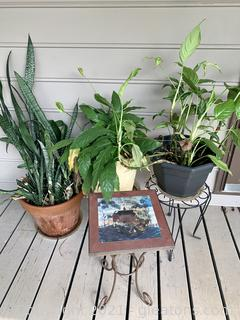 3 Planters and Plant Stands