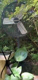 Industrial Commercial Outdoor Fan