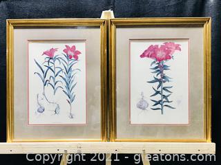 Framed Botanical Prints by H.J. Elwes