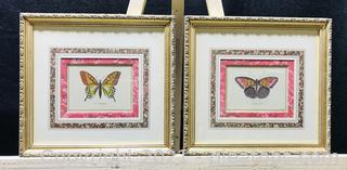 Beautifully Matted and Framed Butterfly Prints (Set of 2)