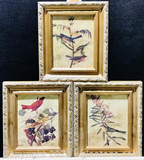 Framed Bird Prints on Canvas - Set of 3