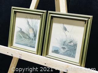 Handsomely Framed Audubon Bird Prints (Set of 2)