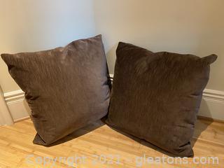Pair of Beautiful Velvet Pillows
