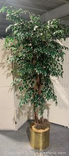 Faux Ficus in Brass Planter