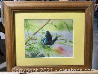 Vintage Butterfly Printed Photograph