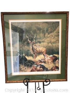 "Framed Art ""Greater Kuda"" Beautiful Wild Life Charles Frace"