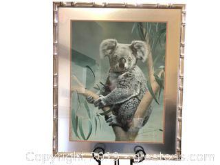 Koala Bear Fabulous Artwork By Charles Frace Frame In Metalic Silver