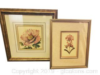 Set Of (2) Beautiful Botanical Framed Wall Art