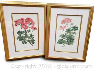 PR Of Botanical Framed Wall Art