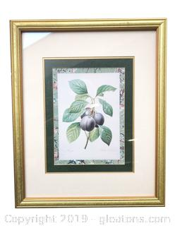 "Wall Hanging Gold Framed And Matted Print Of ""Black Plums"""