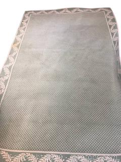 Large Area Rug Has Stains