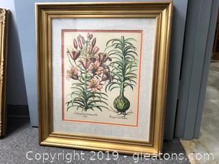 Large Vtg. Botanical Framed Picture