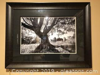 Black and white framed wall art