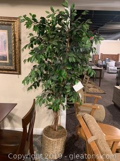 Silk Ficus Tree by Floral Art