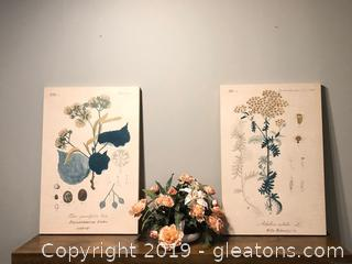 Pair of Vintage Botanical Wall Art on Canvas
