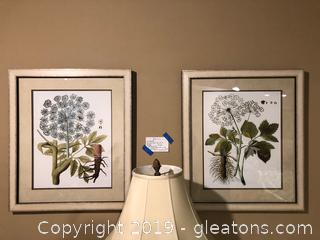 Framed Wall Art Set of 2 Botanicals