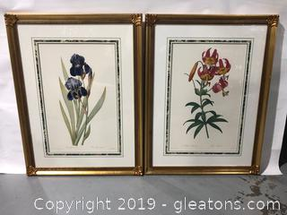 Painted by PJ Redoule Pina a Pair of Floral Prints of de Goury Sculp