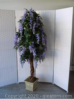 Purple Silk Wisteria Tree