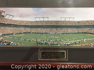 Miami Dolphins Pro Player Stadium framed Photograph