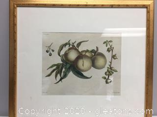 Fruit Painting by Prevest