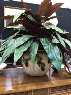 Large Aspidistra in a Glazed Pottery with Grapes