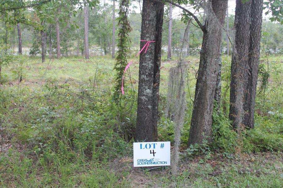 Clearwater Pines Residential Development at Lake Seminole, GA